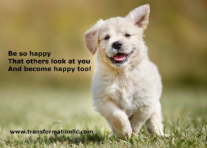 CTA_Happy Puppy blog